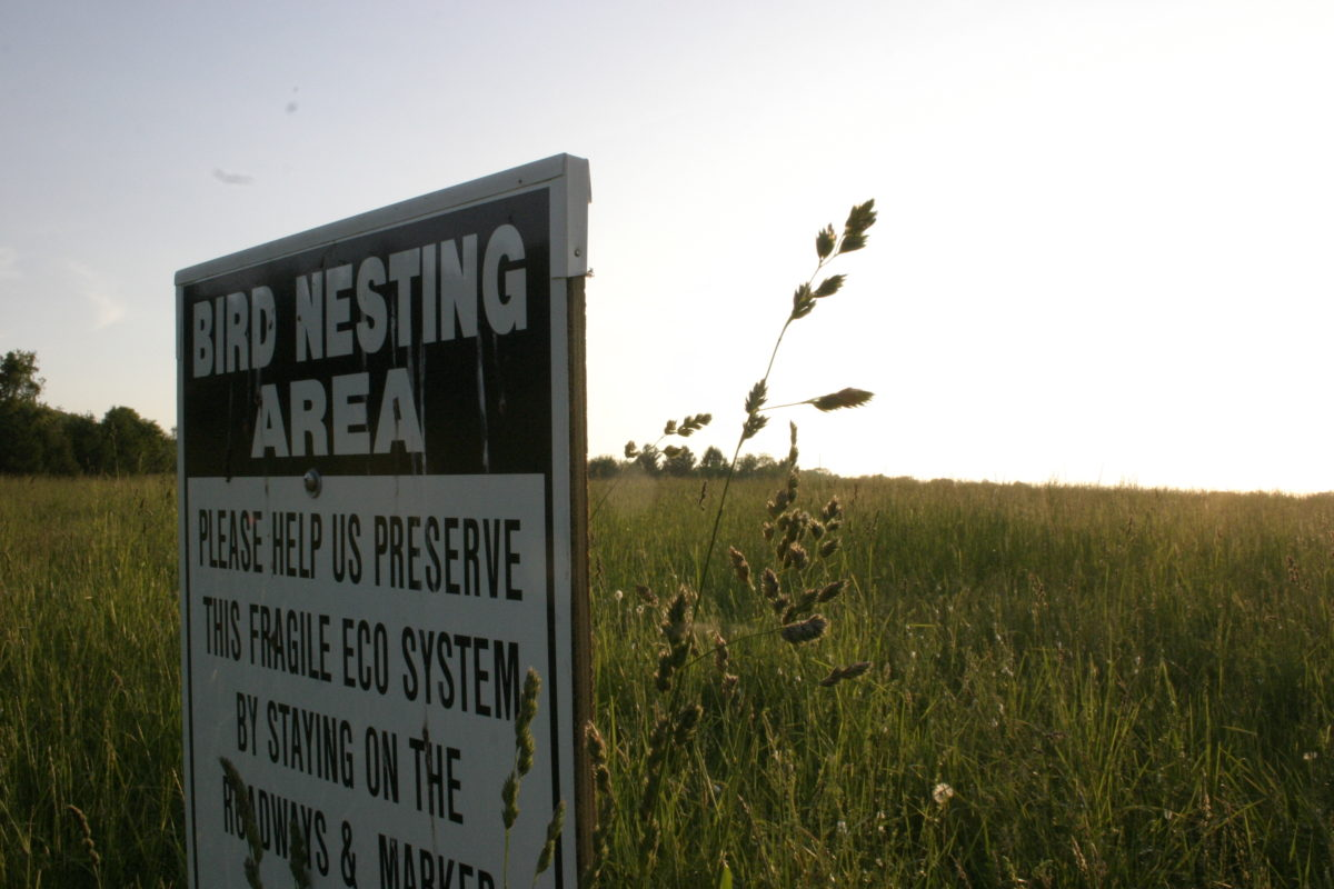 sign warning of bird nesting area keep out of hayfield