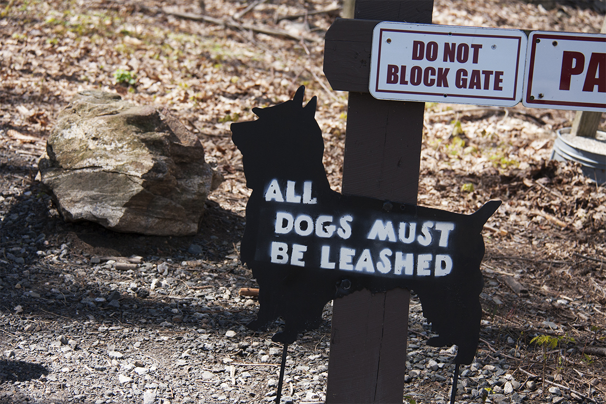 sign of scotty dog with leash message