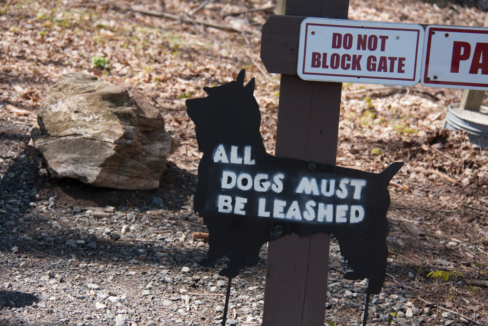 all-dogs-must-be-leashed-scotty-dog-sign