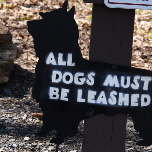 all dogs must be leashed scotty dog sign