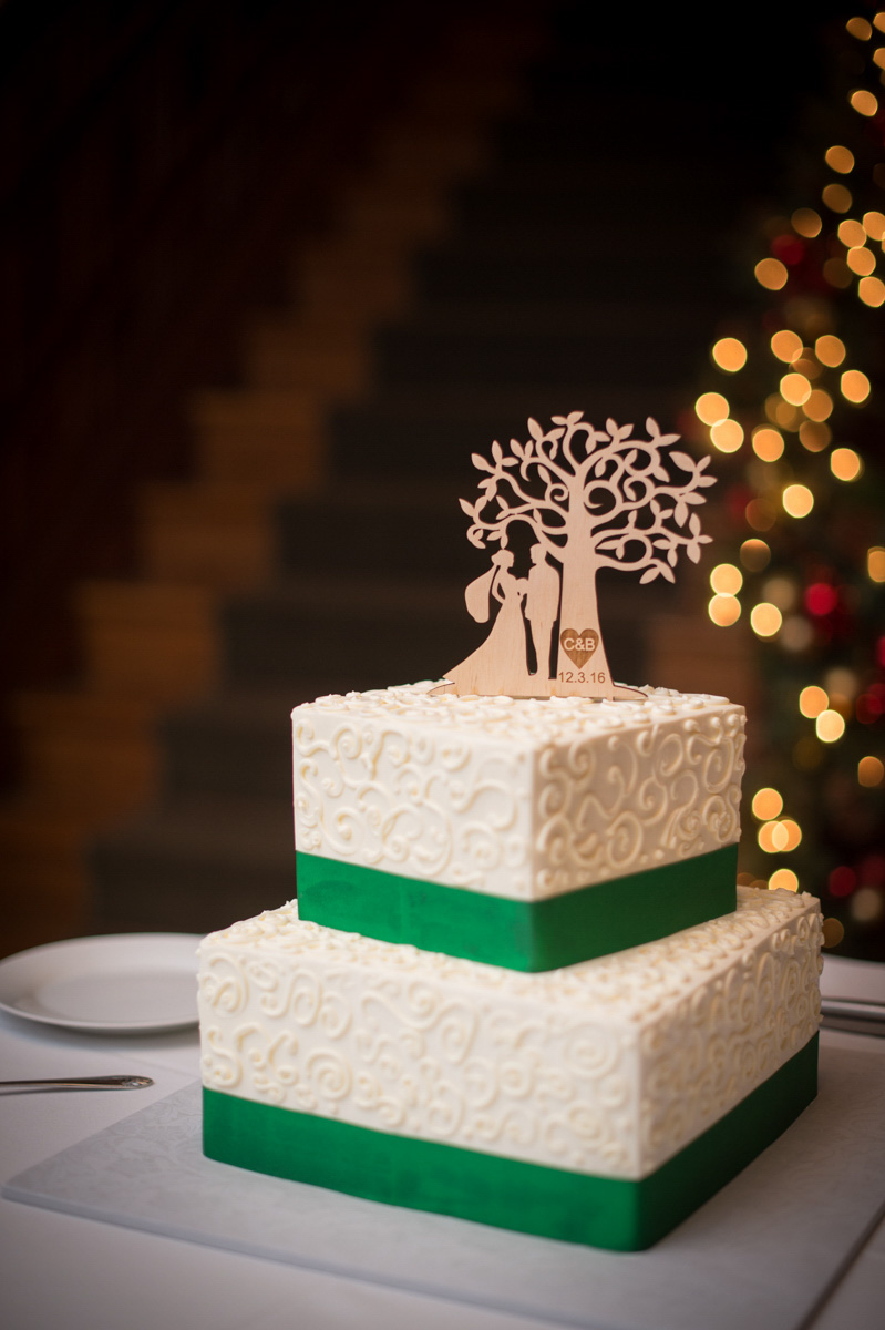 two tier white cake with bride, groom, tree silouette topper