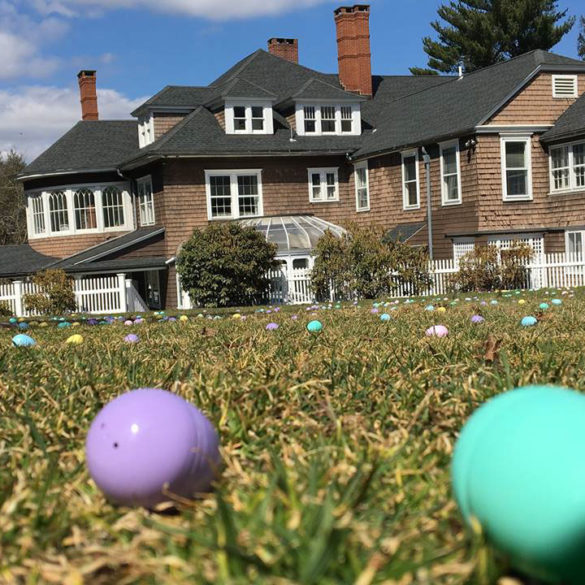 plastic-eggs-scattered-on-lawn-for-egg-hunt-fundraiser