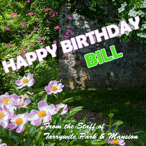flowers with happy birthday bill text