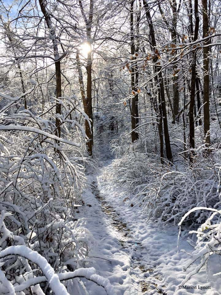 hiking-trail-covered-in-snow