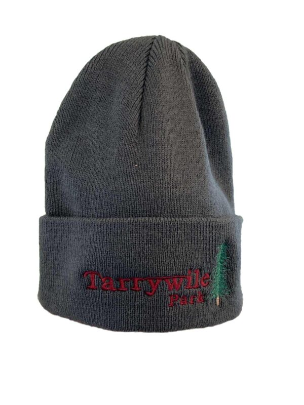 knitted tarrywile gray watch cap